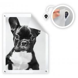 GoodHangUps - 8 x stickers met zwarte tekst incl. 8 magneetjes