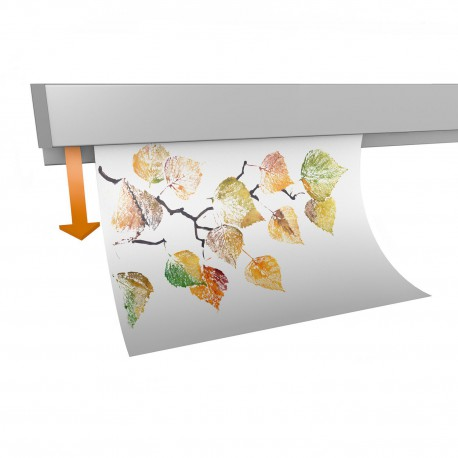 GeckoTeq Papierklem Rail (incl. eindkapjes en bevestigingsmaterialen) - 1kg